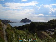 Pelara_greca-4196